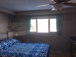 Photo 24: 49274 RR 225: Rural Leduc County House for sale : MLS®# E4186172