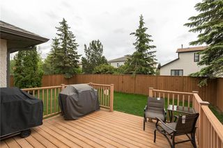 Photo 26: 159 Lindenwood Drive West in Winnipeg: Linden Woods Residential for sale (1M)  : MLS®# 202013127