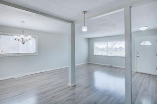 Photo 12: 7743 FLEETWOOD Drive SE in Calgary: Fairview Detached for sale : MLS®# A1009160