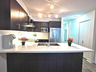 """Photo 2: 216 500 ROYAL Avenue in New Westminster: Downtown NW Condo for sale in """"DOMINION"""" : MLS®# R2502994"""