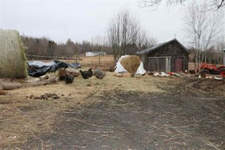 Photo 29: 1681 North River Road in Mosherville: 403-Hants County Residential for sale (Annapolis Valley)  : MLS®# 202004486