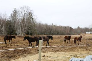 Photo 30: 1681 North River Road in Mosherville: 403-Hants County Residential for sale (Annapolis Valley)  : MLS®# 202004486