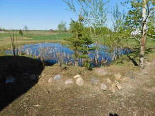 Photo 41: 31, 23422 Twp Rd 582: Rural Sturgeon County House for sale : MLS®# E4197005