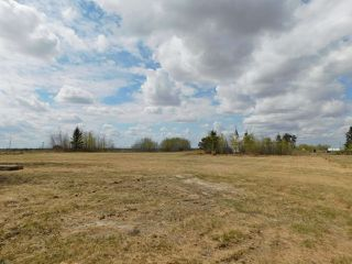 Photo 39: 31, 23422 Twp Rd 582: Rural Sturgeon County House for sale : MLS®# E4197005