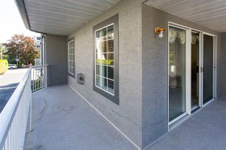 """Photo 13: 114 5375 205 Street in Langley: Langley City Condo for sale in """"Glenmont Park"""" : MLS®# R2461210"""