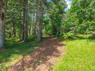 Photo 48: 9880 Panorama Ridge Rd in Chemainus: Du Chemainus House for sale (Duncan)  : MLS®# 842285