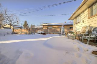 Photo 14: 49 Montrose Crescent NE in Calgary: Winston Heights/Mountview Detached for sale : MLS®# A1058784