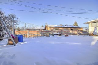Photo 13: 49 Montrose Crescent NE in Calgary: Winston Heights/Mountview Detached for sale : MLS®# A1058784