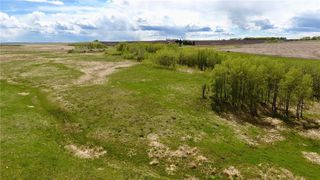 Photo 4: : Rural Mountain View County Land for sale : MLS®# C4278326