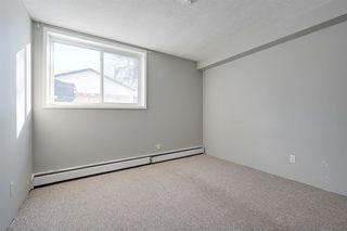 Photo 14: 7 10910 53 Avenue in Edmonton: Zone 15 Condo for sale : MLS®# E4186402