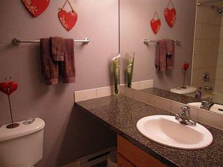 Photo 14: 8 6300 LONDON Road: Steveston South Home for sale ()  : MLS®# V1009898