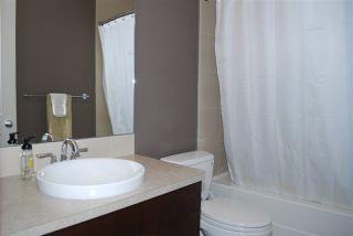 Photo 13: 20718 56A Avenue in Edmonton: Zone 58 House for sale : MLS®# E4216952