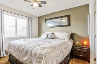 Photo 20: 17 Copperfield Court SE in Calgary: Copperfield Row/Townhouse for sale : MLS®# A1056969