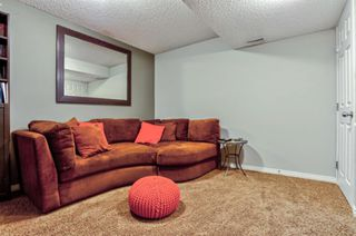 Photo 32: 17 Copperfield Court SE in Calgary: Copperfield Row/Townhouse for sale : MLS®# A1056969