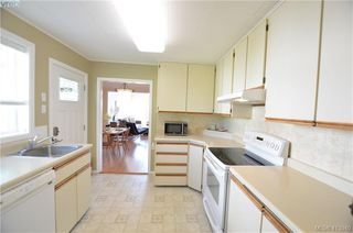 Photo 14: 569 Leaside Ave in VICTORIA: SW Glanford Single Family Detached for sale (Saanich West)  : MLS®# 820971