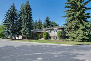 Photo 1: 162 Willow Way in Edmonton: Zone 22 House for sale : MLS®# E4169073