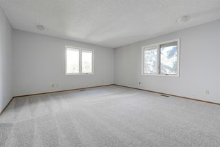 Photo 19: 162 Willow Way in Edmonton: Zone 22 House for sale : MLS®# E4169073