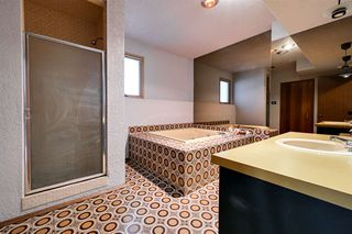 Photo 28: 162 Willow Way in Edmonton: Zone 22 House for sale : MLS®# E4169073