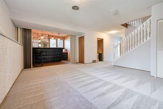 Photo 26: 162 Willow Way in Edmonton: Zone 22 House for sale : MLS®# E4169073