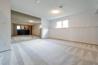 Photo 25: 162 Willow Way in Edmonton: Zone 22 House for sale : MLS®# E4169073