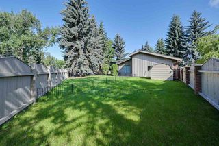 Photo 16: 162 Willow Way in Edmonton: Zone 22 House for sale : MLS®# E4169073