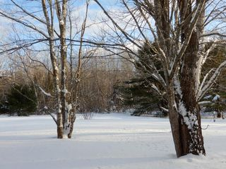 Photo 10: 1379 Alma Road in Loch Broom: 108-Rural Pictou County Residential for sale (Northern Region)  : MLS®# 202002725