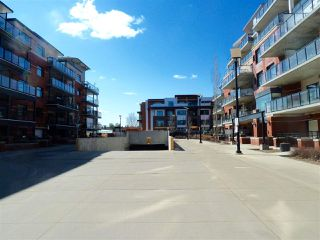 Photo 21: 206 141 Festival Way: Sherwood Park Condo for sale : MLS®# E4191552
