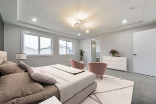 Photo 25: 1319 HAINSTOCK Way in Edmonton: Zone 55 House for sale : MLS®# E4173331