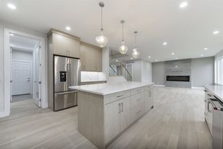 Photo 11: 1319 HAINSTOCK Way in Edmonton: Zone 55 House for sale : MLS®# E4173331