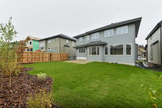 Photo 30: 1319 HAINSTOCK Way in Edmonton: Zone 55 House for sale : MLS®# E4173331
