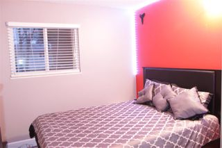 Photo 13: 13502 79A Avenue in Surrey: West Newton 1/2 Duplex for sale : MLS®# R2409194