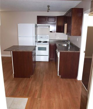 Photo 19: 7416 23 Street SE in Calgary: Ogden Detached for sale : MLS®# C4270963