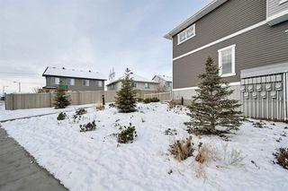 Photo 35:  in Edmonton: Zone 55 Townhouse for sale : MLS®# E4182743