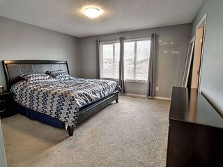 Photo 14: 3908 166 Avenue in Edmonton: Zone 03 House for sale : MLS®# E4184864