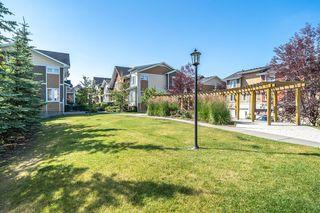 Photo 45: 47 AUBURN BAY Link SE in Calgary: Auburn Bay Row/Townhouse for sale : MLS®# A1010626
