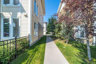 Photo 41: 47 AUBURN BAY Link SE in Calgary: Auburn Bay Row/Townhouse for sale : MLS®# A1010626