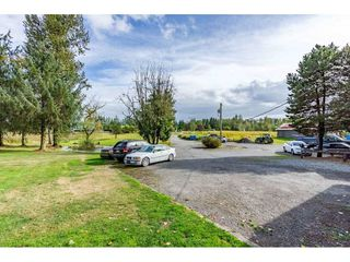 Photo 5: 26915 48 Avenue in Langley: Salmon River House for sale : MLS®# R2501939