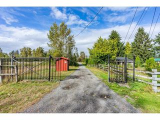 Photo 8: 26915 48 Avenue in Langley: Salmon River House for sale : MLS®# R2501939