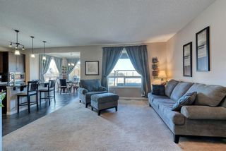 Photo 12: 27 SKYVIEW SPRINGS Cove NE in Calgary: Skyview Ranch Detached for sale : MLS®# A1053175