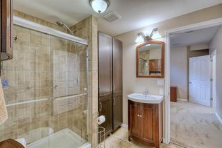 Photo 41: 27 SKYVIEW SPRINGS Cove NE in Calgary: Skyview Ranch Detached for sale : MLS®# A1053175