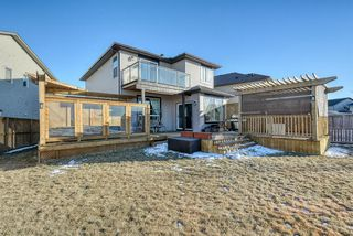 Photo 44: 27 SKYVIEW SPRINGS Cove NE in Calgary: Skyview Ranch Detached for sale : MLS®# A1053175