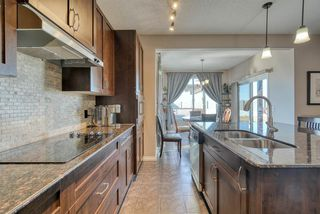 Photo 9: 27 SKYVIEW SPRINGS Cove NE in Calgary: Skyview Ranch Detached for sale : MLS®# A1053175