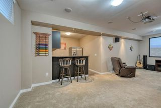 Photo 35: 27 SKYVIEW SPRINGS Cove NE in Calgary: Skyview Ranch Detached for sale : MLS®# A1053175