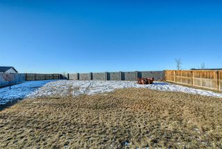 Photo 43: 27 SKYVIEW SPRINGS Cove NE in Calgary: Skyview Ranch Detached for sale : MLS®# A1053175