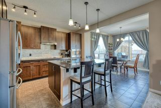 Photo 3: 27 SKYVIEW SPRINGS Cove NE in Calgary: Skyview Ranch Detached for sale : MLS®# A1053175