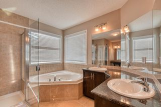 Photo 28: 27 SKYVIEW SPRINGS Cove NE in Calgary: Skyview Ranch Detached for sale : MLS®# A1053175