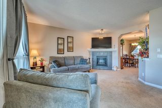 Photo 15: 27 SKYVIEW SPRINGS Cove NE in Calgary: Skyview Ranch Detached for sale : MLS®# A1053175