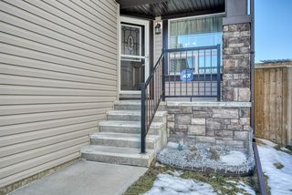 Photo 2: 27 SKYVIEW SPRINGS Cove NE in Calgary: Skyview Ranch Detached for sale : MLS®# A1053175