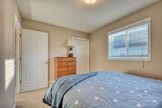 Photo 23: 27 SKYVIEW SPRINGS Cove NE in Calgary: Skyview Ranch Detached for sale : MLS®# A1053175