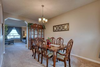 Photo 16: 27 SKYVIEW SPRINGS Cove NE in Calgary: Skyview Ranch Detached for sale : MLS®# A1053175